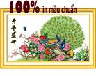 Khai bình thịnh thế (Tranh thêu chữ thập chim công in màu)