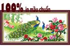 Phú quý trinh tường (tranh thêu in mầu) tranh thêu chim công