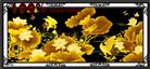 HOA SEN VÀNG - PHÚ QUÝ TRƯỜNG THỌ (Tranh thêu chữ thập hoa sen in màu)