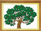 Cây TIền - giàu sang (in màu)