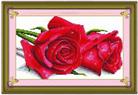 Hoa hồng tình yêu (in mầu)
