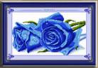 Hoa hồng xanh (in mầu)