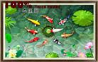 Cửu ngư tụ tài đồ (tranh thêu in mầu) - tranh thêu phong thủy